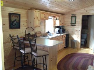 Cozy Cabin with Deck and Internet Access - Paint Bank vacation rentals
