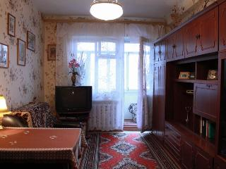 Typical Ukrainian apartment,Simferopol. Cheap&cozy - Simferopol vacation rentals