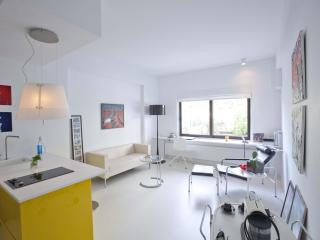 A High-End Designed Apartment in Kolonaki - Athens - Kalyvia Thorikou vacation rentals