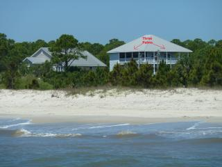 Three PalmsCompound-Beach Front  Pool-Pet Friendly - Port Saint Joe vacation rentals