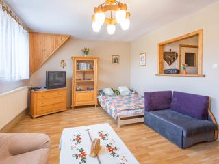 1 bedroom Condo with Internet Access in Zakopane - Zakopane vacation rentals