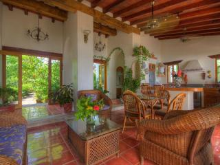 Villa in front of perfect surf breaks, best views - Platanitos vacation rentals