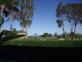 Ocean View, Discount Golf, Clean, Central located - Kohala Coast vacation rentals