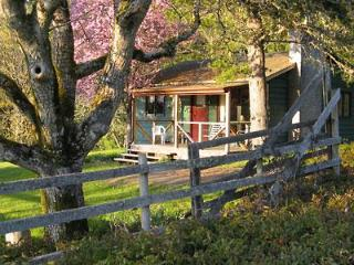 Classic Farm Stay Cottage - Gulf Islands vacation rentals