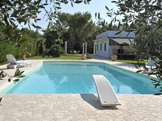 3 bedroom House with Private Outdoor Pool in Brindisi - Brindisi vacation rentals