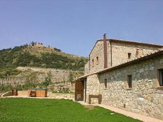 6 bedroom House with Private Outdoor Pool in Montalcino - Montalcino vacation rentals