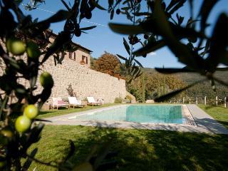 Lucente - Cortona vacation rentals