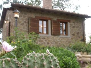 1 bedroom Cottage with Deck in Loro Ciuffenna - Loro Ciuffenna vacation rentals