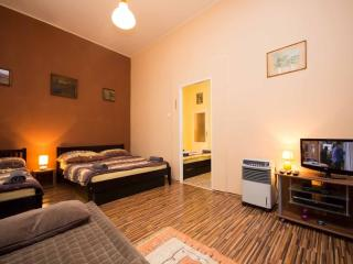 Two bedroom apartment Letna - Prague vacation rentals