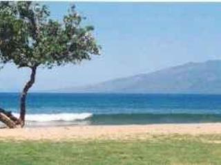 Honokowai Beach in front of condo complex - Cozy Maui Condo near Kaanapali! - Ka'anapali - rentals
