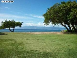 Cozy Maui Condo near Kaanapali! - Ka'anapali vacation rentals