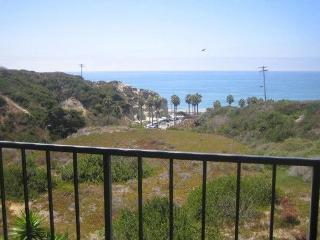 Beach front condo;  WE ONLY RENT BY THE MONTH - San Clemente vacation rentals