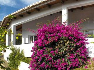 1 bedroom Condo with Satellite Or Cable TV in Arenas - Arenas vacation rentals