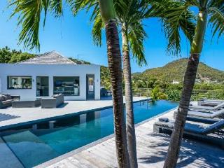 Brand new contemporary Avenstar, two heated pools & water fall stone garden - Camaruche vacation rentals