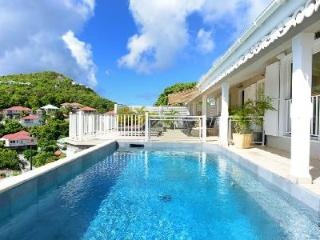South View Villa with beautiful sunset views, staff and vehicle included - Colombier vacation rentals