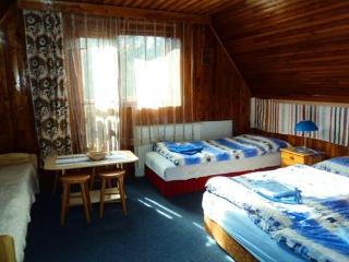 Beautiful Cottage with Parking and Satellite Or Cable TV - Stara Lesna vacation rentals