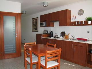 Luxury apartment in the heart of Eger - Hungary vacation rentals
