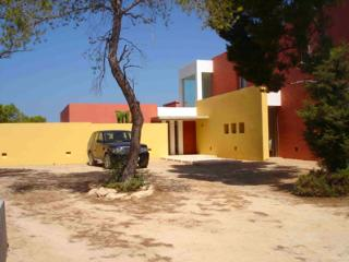 6 bedroom House with Private Outdoor Pool in Ibiza - Ibiza vacation rentals
