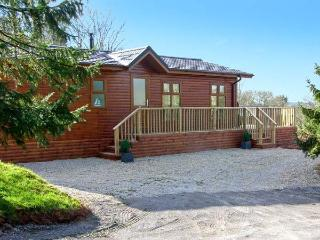FIRS LODGE, romantic, luxury holiday lodge, with hot tub, golf and fishing in Narberth, Ref 21009 - Narberth vacation rentals