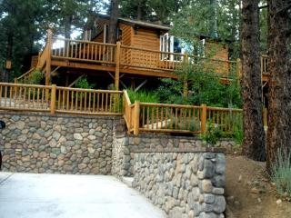 #081 Arizona Bear - Big Bear Area vacation rentals