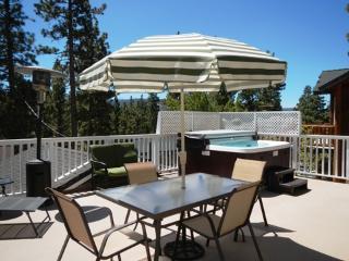 #040 Bear Lake Retreat - Big Bear City vacation rentals