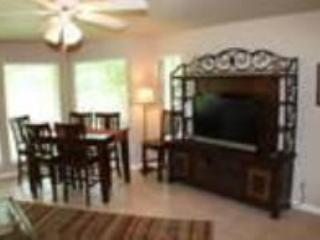 THE BEST PLACE TO STAY - THE COOL RIVER CONDO - Image 1 - New Braunfels - rentals