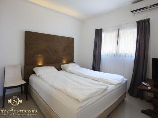 Amazing Luxury 2Bdr Sea View Suite - Tel Aviv vacation rentals