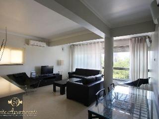 Hayarkon Luxury Apartments Tel Aviv - Tel Aviv vacation rentals