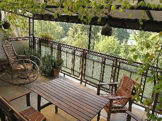 2bdr Kazimierz Apart-great terrace with river view - Krakow vacation rentals