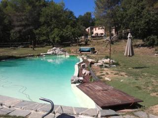 Charming, Pet-Friendly 3 Bedroom Villa on with a Big Pool - Tourrettes-sur-Loup vacation rentals