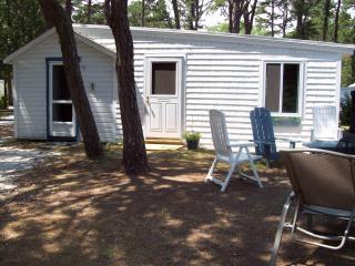 2 bedroom Cottage with Stove in Wellfleet - Wellfleet vacation rentals