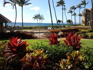The Ocean Is Your Landscape - Maalaea vacation rentals