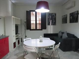 Lovely apartment just in the heart of Seville. 1 Bedroom(4pax) - Seville vacation rentals