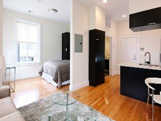 South End - Tremont #2 - Studio, 1 bath, sleeps 2-4 - Greater Boston vacation rentals