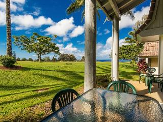 Puamana 12A, Mountain & Ocean Views!  Comforatable, Clean and Cute! - Princeville vacation rentals