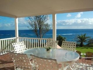 C55. John Smiths Ocean View House - Southampton vacation rentals