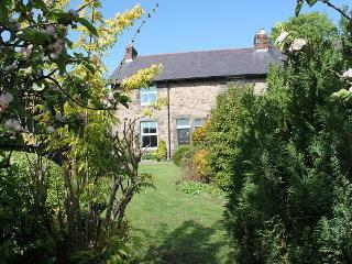 Comfortable 2 bedroom Cottage in Wooler with Internet Access - Wooler vacation rentals