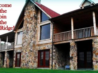 Cabin In The Woods- Also Close to Wytheville - Marion vacation rentals