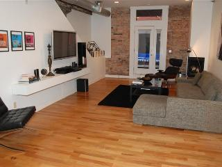 HUGE Luxury Loft Central Downtown Cincinnati! - Cincinnati vacation rentals