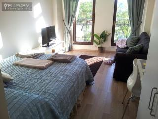 Private Studio Apt!  Modern City Home with Kitchen - Istanbul vacation rentals