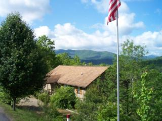 Laurel Mountain Cabins -Daisy Cabin- Panoramic Views! - Hiawassee vacation rentals