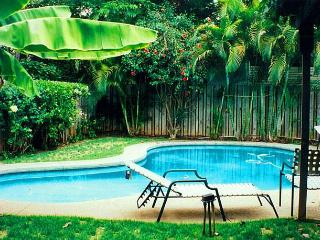 Tropical Gardens Cottage & Pool - Lahaina vacation rentals