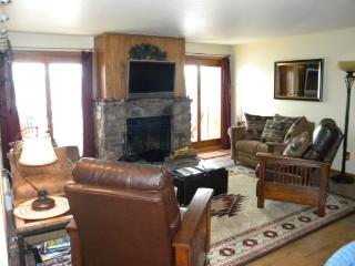 BB204 Buffalo Village 2BR 2BA - Silverthorne - Frisco vacation rentals