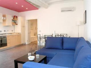 Gorgeous Apartment near Colosseo - Rome vacation rentals