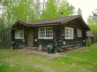 Charming One Room Log Cabin on White Iron Lake - Ely vacation rentals