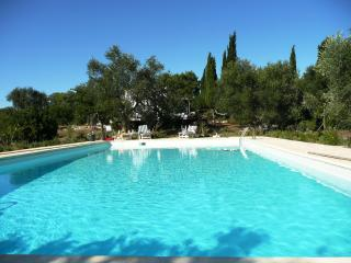TRULLISSIMO  Huge Pool, Great views, Privacy, WiFi - Ceglie Messapica vacation rentals