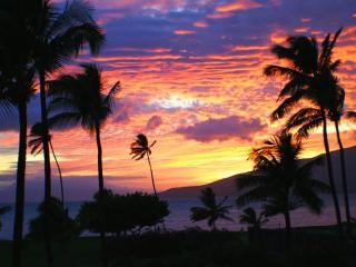 Beautiful Ocean Front/View 2 bedroom condo resort - Kihei vacation rentals