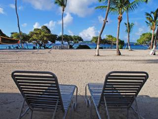 Beach front studio Apt.-lovely white sandy beach - Saint Thomas vacation rentals