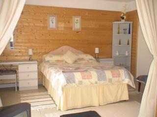 Studio 'La Cistude' - Centre vacation rentals