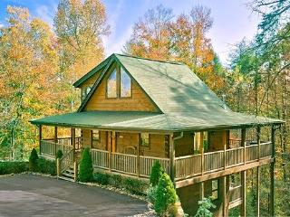 CEDAR FOREST -Private-Home Theater- 2/2 - Pigeon Forge vacation rentals
